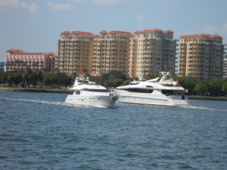 Dolphin Cruise Con Don Y Eva 065