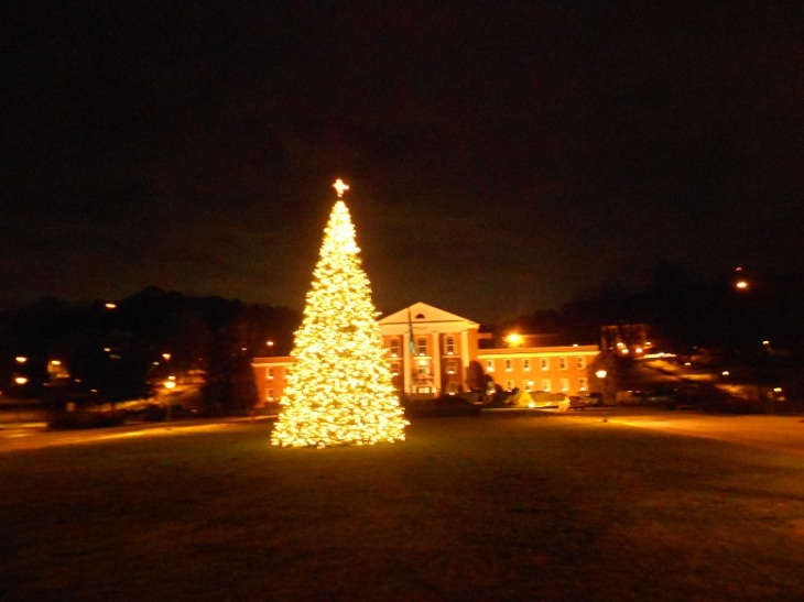 Southern Christmas Tree