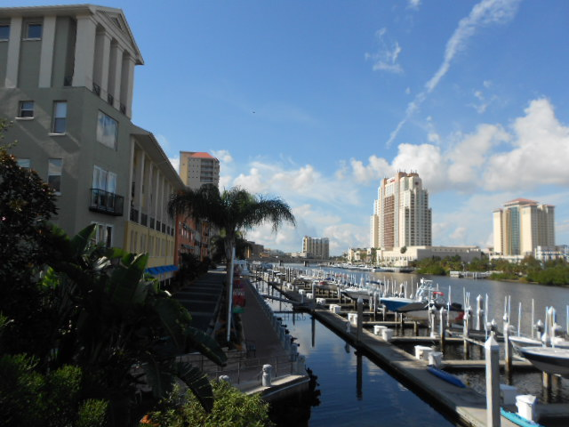 I am writing tonight from the beautiful Tampa Bay area.