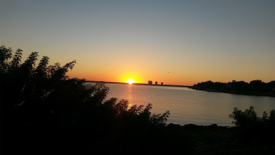 Davis Island Oct 14